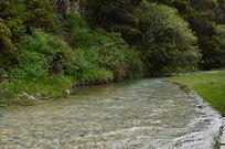 草原里清澈见底的溪水