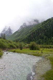 森林中清澈的溪流