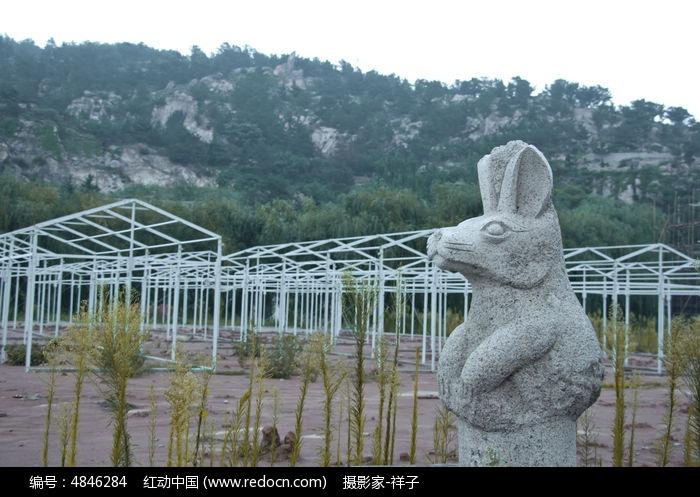 兔子的雕刻步骤图片