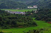 绿色田野里的村庄