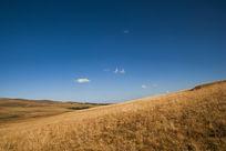 蓝天下的草原秋色