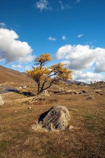 深秋的高原地区
