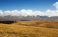 新疆地区的草原