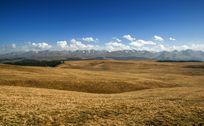 新疆喀拉骏草原