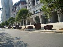人行横道上的树和花盆
