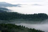 云雾覆盖山岭