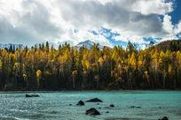 中国新疆喀纳斯的秋天