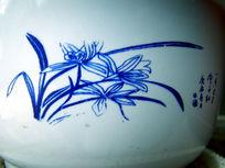被画在花盆上的君子兰