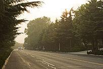 崂山的公路