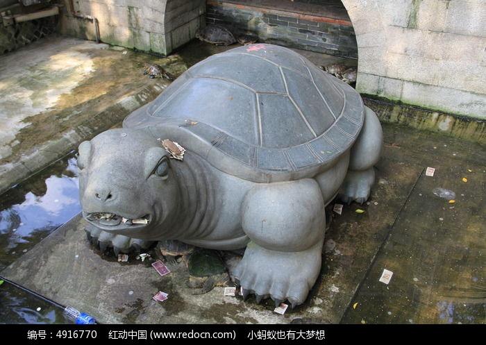 许愿池里的乌龟雕塑图片