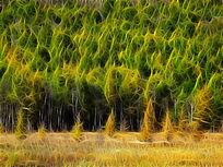 电脑抽象画《秋色的森林》