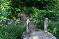 林间的吊桥