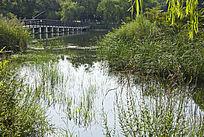 青岛李村公园的湖