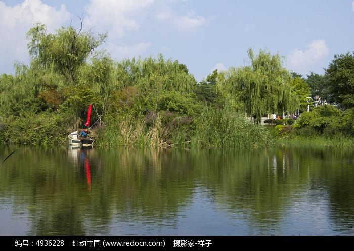 青岛李村公园的湖水