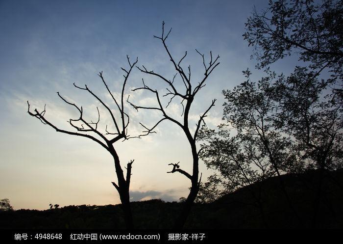 浮山的树木剪影图片,高清大图_山峰山脉素材