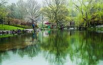 清晨的杭州太子湾公园