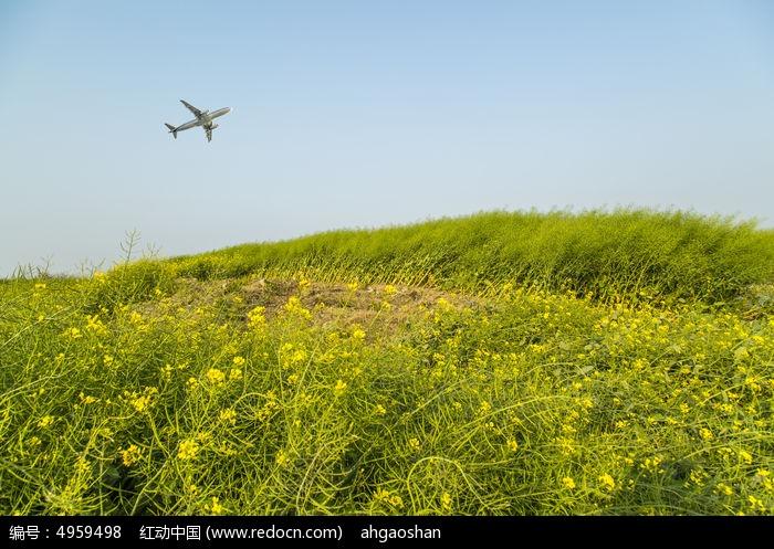 田野上空的飞机图片,高清大图