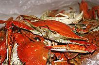 肥美的海鲜螃蟹