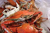 煮熟的海鲜螃蟹