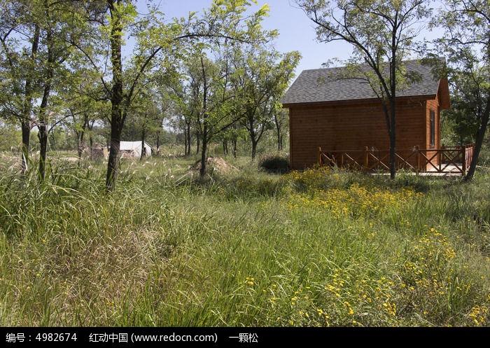 森林中的小木屋图片,高清大图图片