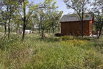 森林中的小木屋