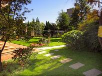 阳光庭院景观