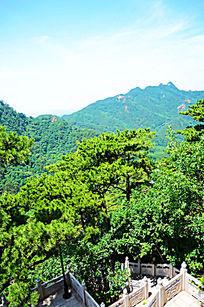 蓝天下千山弥勒宝塔院内松树