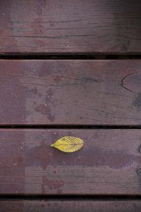 木板上的落叶