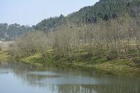 青山绿水的乡村
