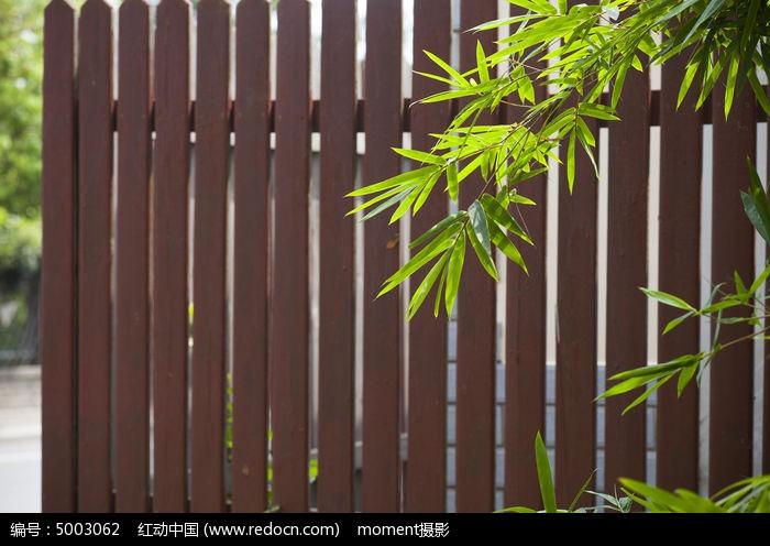 原创摄影图 背景素材 背景 围栏前的竹子  请您分享: 素材描述:红动网
