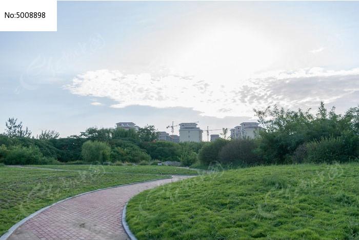 日出草地小路自然风景