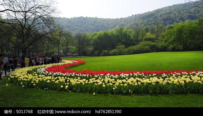 太子湾草坪花卉图片,高清大图_森林树林素材