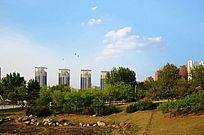 白云下的孟泰公园与附近的四座柱楼