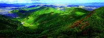 大自然生态绿岛摄影图