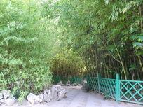 竹林小径栅栏背景图