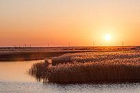 夕阳时刻原生态湿地风光