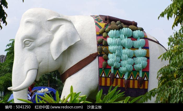 大象驮运热带水果图片