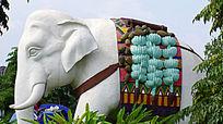 大象驮运热带水果
