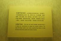 高腰带盖梅瓶展示牌