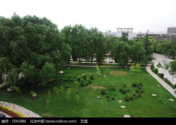 俯视校园风景图片