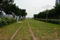 广州琶洲草地列车轨道