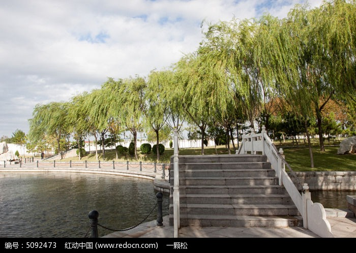 公园中的小桥柳树