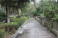 街道一景图