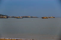 蓝天渔港海鸥