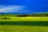 电脑画《田园风光》