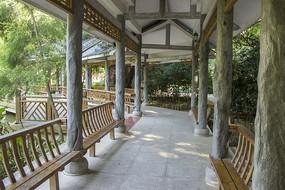 金花茶公园走廊