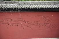 红墙枯藤肌理背景素材