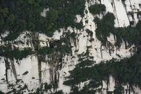 华山岩石绿色植物斑驳肌理背景素材