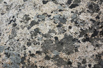华山岩石苔藓斑驳纹理背景素材