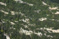 华山岩石植物斑驳肌理背景素材